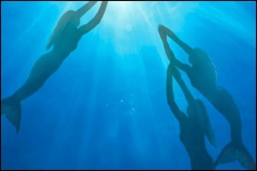 Mermaids Don't Exist, US Government Says